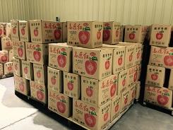 果蔬冷藏倉儲服務